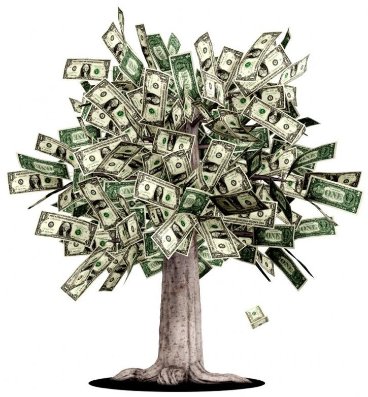 Grow Your Money Tree Salvatore Manzi